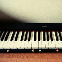 2017年6月30日 やはりピアノに・・