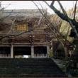宇佐~牧野植物園