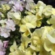 本州最南端 わかやま 串本 南紀 鍼灸 接骨院 4/14(土)施術予定