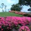 葛西・総合レクリエーション公園