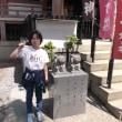 写真館を「No.830 風薫るツーリングの季節(今戸神社)」に更新しました!