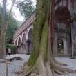 12月28-29日 京都・奈良へ 大野指揮第九も聴く四声素晴らしい ・京都市響