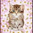 色鉛筆画415 (桜と子猫)