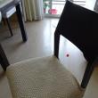 ★ニャンのために椅子カバー★