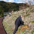 エコプロ高森、美植たかもりプロジェクトの追加植樹