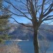 富士・西湖周辺