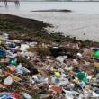 EU PROPOSES PLAN TO CUT PLASTIC WASTE EU 使い捨てプラスチック製品の規制へ