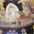 「究極の希望-死者の復活」 コリントの信徒への手紙一、15章35-52節