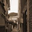 安芸の宮島41(ヨシ)