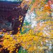 秋のレクリェーション