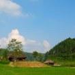 農村が安全なコミュニティになれば、社会が変わる。