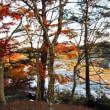 曽木の滝公園もみじ祭り2017・・・鹿児島の風景