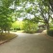 2017 金剛駅~狭山池へ、西高野分岐から天野街道に入り、天ヶ池へ抜け千代田駅から電車に乗ります。