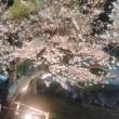 4/3 第7節 モンテディオ山形戦 (京都・西京極競技場)