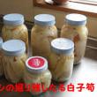竹の子の水煮