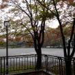 近所の秋模様