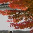 白壁に紅葉