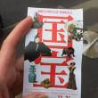 国宝展 / National Treasures Exhibition