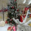 伊予鉄高島屋のクリスマスツリー