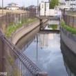 基幹農業用水路の水位高くなる