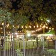明治神宮外苑・森のビアガーデン