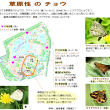 【18-1021】☆白鳥庭園エシカルデー2018