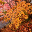 【水郡線沿線と北茨城の紅葉を見る(2017年)の巻3】