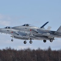 11/27 千歳 F-15