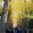 大田黒公園に行ってきました-2。