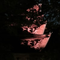 龍口寺竹灯篭(2)