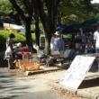 朝の浜松城公園