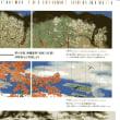 「生誕150年 横山大観展」 東京国立近代美術館 を観た印象