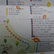 今週末の予定は決まりましたか!!今週末は「秋彩こみちin角館」 クラフト市へお出かけください!!