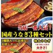 奈良の従兄弟宅で鰻を食す