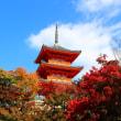 秋の京都 その1~2016.11.12 清水寺~