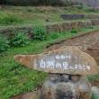 三島の山田川