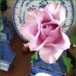 一本のバラ