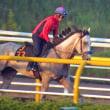 【グランソヴァール】5回東京開幕週に戸崎騎手で続戦へ