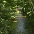 玉川上水を歩く2:玉川上水駅〜羽村