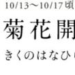 菊花(*^^*)