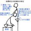 後頸深部筋の解剖と鍼灸治療点