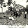 日本遺族通信 平成29年8月15日号 遺書紹介他