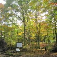 10/19(木)のPACニュース~追分&軽井沢周辺の情報