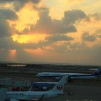 また会いに行くよ。大好きな沖縄へ
