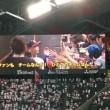 プロ野球 日本ハムファイターズ観戦!