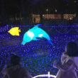 光の祭典 2017