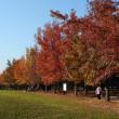 三木森林公園