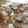 【大雪山国立公園・旭岳情報】穏やかな気候