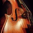 バイオリンの弦は、何で出来ているか知っていますか?