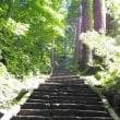山形 鶴岡への旅